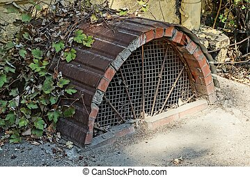 old brown cellar window with grill dirty and overgrown on the sidewalk