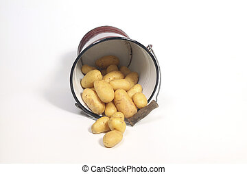 Old bucket overflowing with potatoes