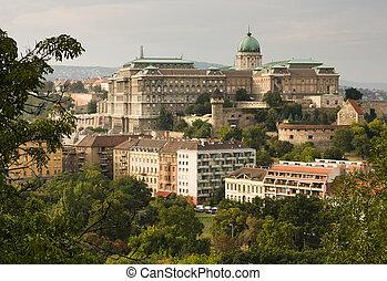 buda castle - old buda castle in Budapest, Hungary, Europe