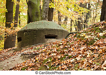 Old bunker in the woods
