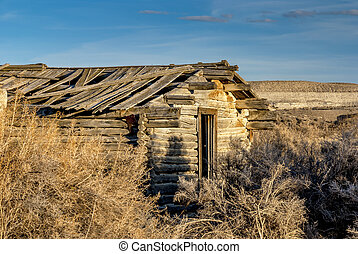 Old cabin forgotten by time