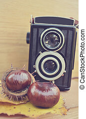 Old camera and fresh chestnut