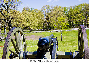 Old Cannon Aimed at Park