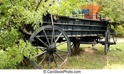 old carriage in the pasture field