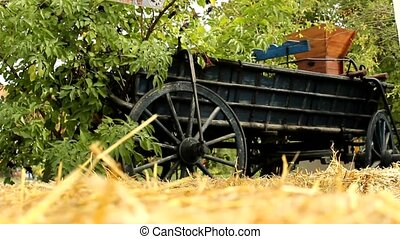old carriage in grass fields