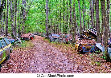 Road Through Woodland Junkyard