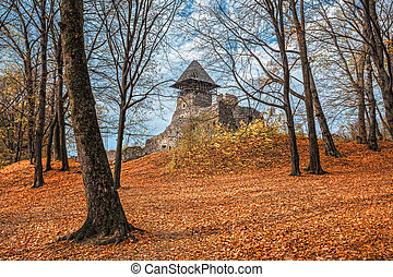 Old castle in autumn forest