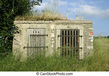 cellar - old cellar doors