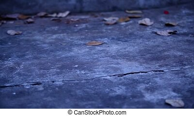 Old Cement floor with dry leaves