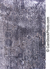 old cement wall texture and background
