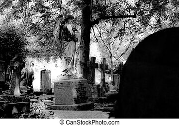 old cemetery in black and white - viewing statute of an angel from behind a tombstone