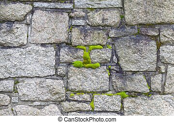 Old cemetery wall and moss