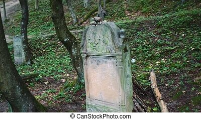Old cemetery with Jewish tombstones. Headstones in Jewish