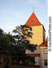 Old church in Prague Castle