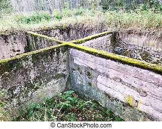 Old concrete cement cement unfinished underground foundation of a ruined building overgrown with green moss