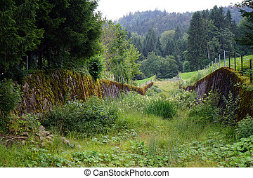 Old concrete walls and green grass in Switzerland