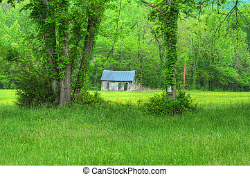 Old Country Cabin