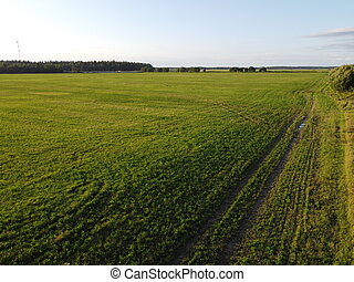 old country road in summer aerial photography