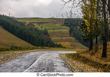 old countryside road on rainy day. gloomy autumn scenery in...