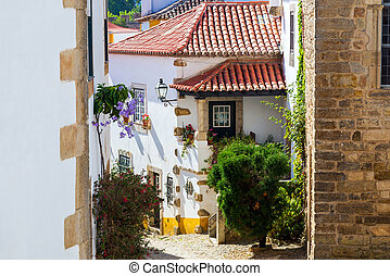 Old cozy narrow streets of old european town in Portugal