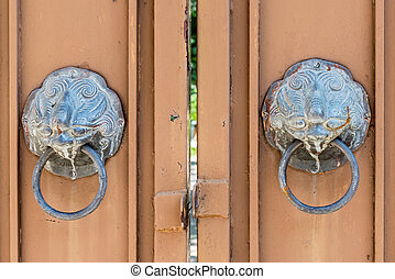 Old door with lion door knocker of Cologne Cathedral.