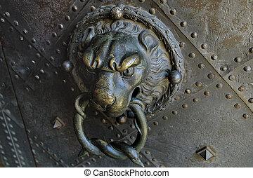 Old door with lion handle