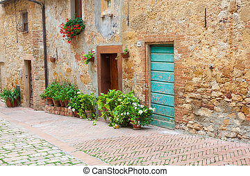 Old elegant doors of Tuscan Italy