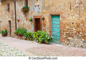 Old elegant doors of Tuscan Italy
