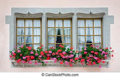 Old European Windows - Old European windows with flowers.