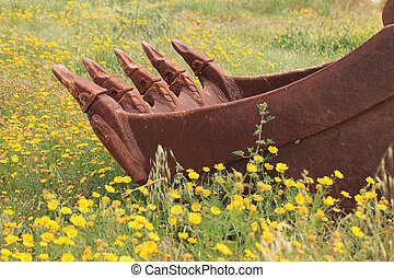 old excavator bucket close-up of a dandelion field....