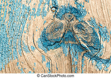 Cracked blue paint texture peeling off of the surface of aged and worn wood. Copy space area fo grunge text designs and concepts.