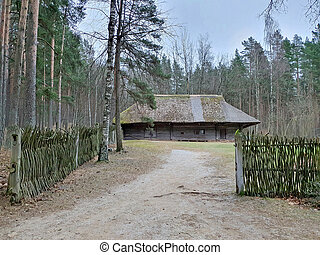 old farm house in the forest