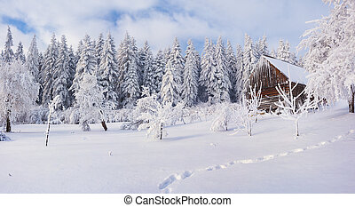 Old farm in the Carpathian mountains. Sunny winter morning....