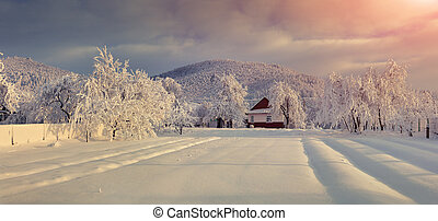 Old farm in the Carpathian mountains. Sunny winter morning.