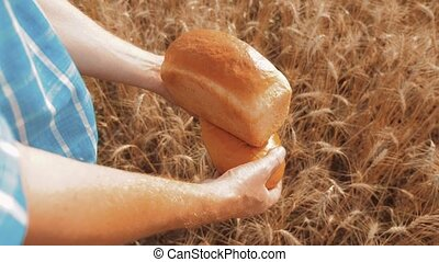 old farmer man baker holds a golden bread and loaf in lifestyle wheat field against the blue sky. slow motion video. successful agriculturist in field of wheat. harvest time. baker bread baking vintage agriculture concept