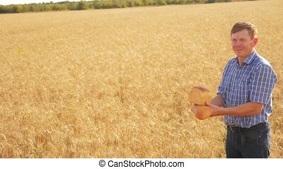 old farmer man baker holds a golden bread and loaf in ripe lifestyle wheat field. slow motion video. harvest time. old man baker bread baking vintage agriculture concept. successful agriculturist in field of wheat