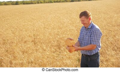 old farmer man baker holds a golden bread and loaf in ripe wheat field lifestyle. slow motion video. harvest time. old man baker bread baking vintage agriculture concept. successful agriculturist in field of wheat