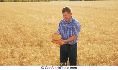 old farmer man baker holds a golden bread and loaf in ripe wheat field. slow motion video. harvest time. old man baker bread baking vintage agriculture concept. successful agriculturist lifestyle in field of wheat