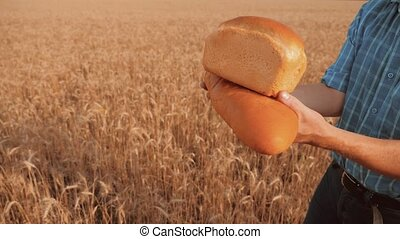 old farmer man baker holds a golden bread and loaf in wheat field against the blue lifestyle sky. slow motion video. successful agriculturist in field of wheat. harvest time. baker bread baking vintage agriculture concept