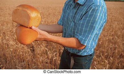 old farmer man baker holds a golden bread and loaf in wheat field against the blue sky. slow lifestyle motion video. successful agriculturist in field of wheat. harvest time. baker bread baking vintage agriculture concept