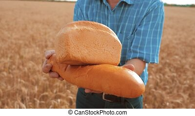 old farmer man baker holds a golden bread and loaf in wheat field against the blue sky. slow motion video. successful agriculturist in field of wheat. harvest time. baker bread lifestyle baking vintage agriculture concept
