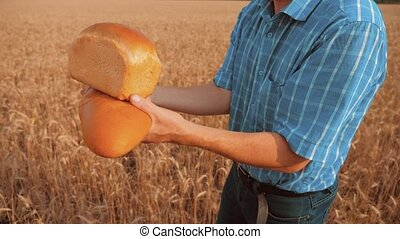 old farmer man baker holds a golden bread and loaf in wheat...