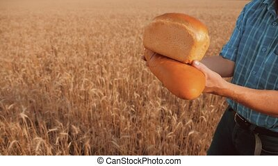 old farmer man baker holds a golden bread and loaf in wheat field against the blue sky. slow motion video. successful agriculturist in field lifestyle of wheat. harvest time. baker bread baking vintage agriculture concept