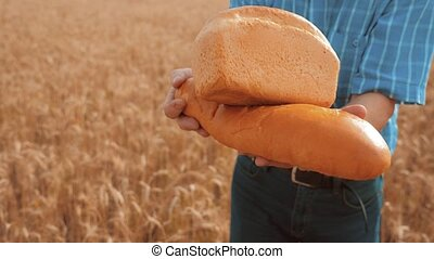 old farmer man baker holds a golden bread and loaf in wheat field against the blue sky. slow motion video. successful agriculturist in field of wheat lifestyle. harvest time. baker bread baking vintage agriculture concept