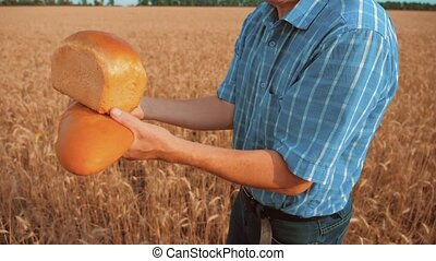 old farmer man baker holds a golden bread and loaf in wheat field against the blue sky. slow motion video. successful agriculturist in lifestyle field of wheat. harvest time. baker bread baking vintage agriculture concept