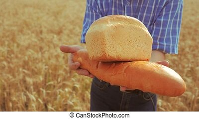 old farmer man baker holds a golden bread and loaf in wheat field against the blue sky. slow motion video. successful agriculturist in field of wheat. harvest time. baker bread baking vintage agriculture concept lifestyle