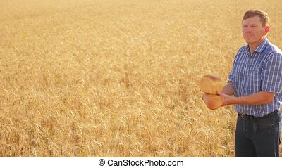 old farmer man baker holds a golden bread and loaf lifestyle in ripe wheat field. slow motion video. harvest time. old man baker bread baking vintage agriculture concept. successful agriculturist in field of wheat