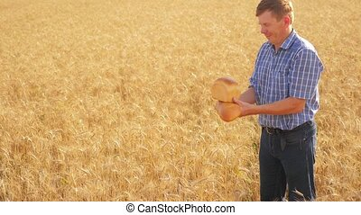 old farmer man baker holds a golden bread lifestyle and loaf in ripe wheat field. slow motion video. harvest time. old man baker bread baking vintage agriculture concept. successful agriculturist in field of wheat