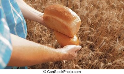 old farmer man baker holds a golden bread lifestyle and loaf in wheat field against the blue sky. slow motion video. successful agriculturist in field of wheat. harvest time. baker bread baking vintage agriculture concept