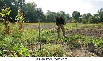 Old farmer mows the grass in his garden.